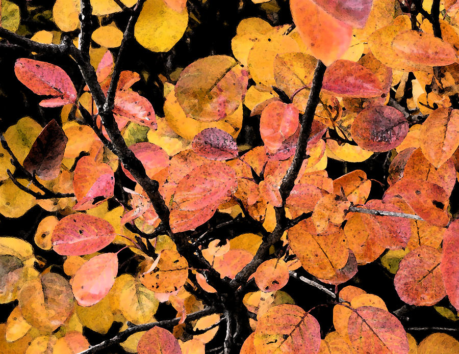 Abstract Digital Art - Fall Leaves by Bill Kennedy