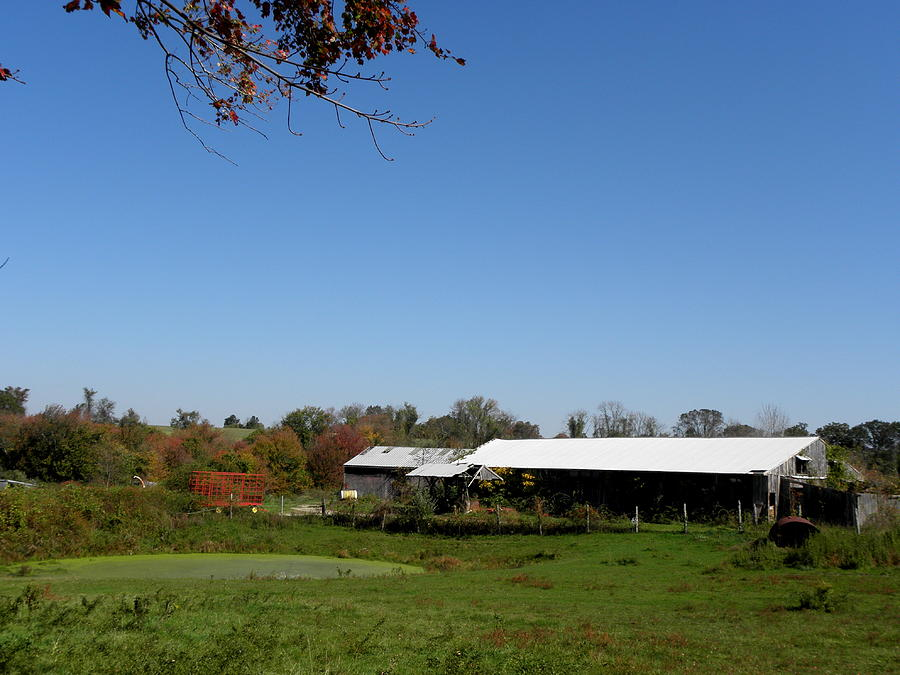 Fall Photograph - Fall On The Farm by Kim Galluzzo Wozniak