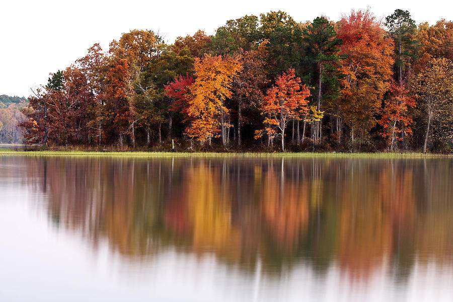 Horizontal Photograph - Fall Reflection by CWellsPhotography