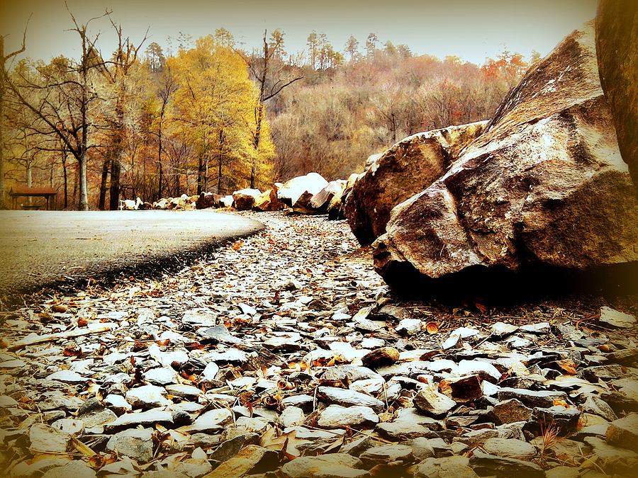 Landscape Photograph - Fall Road by Becky Foster