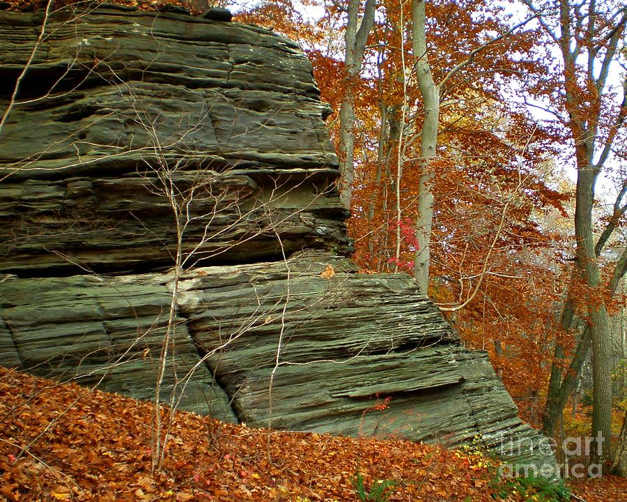 Fall Photograph - Fall Rock by Meandering Photography