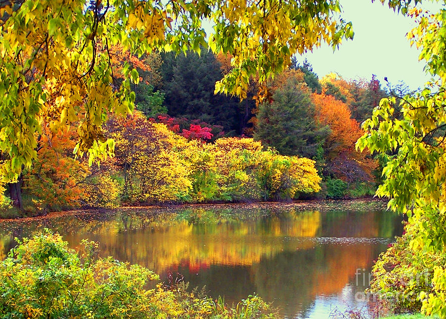 Fall scene photograph by jim okeefe - Pics of fall scenes ...