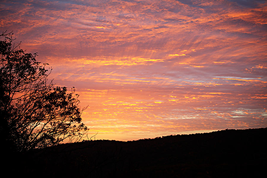 Metro Photograph - Fall Sunrise by Metro DC Photography