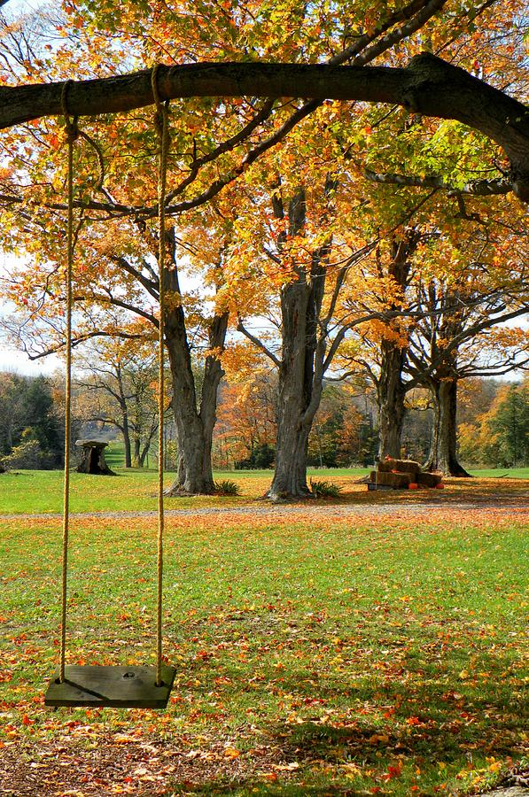 Fall Photograph - Fall Swing by Jennifer Compton