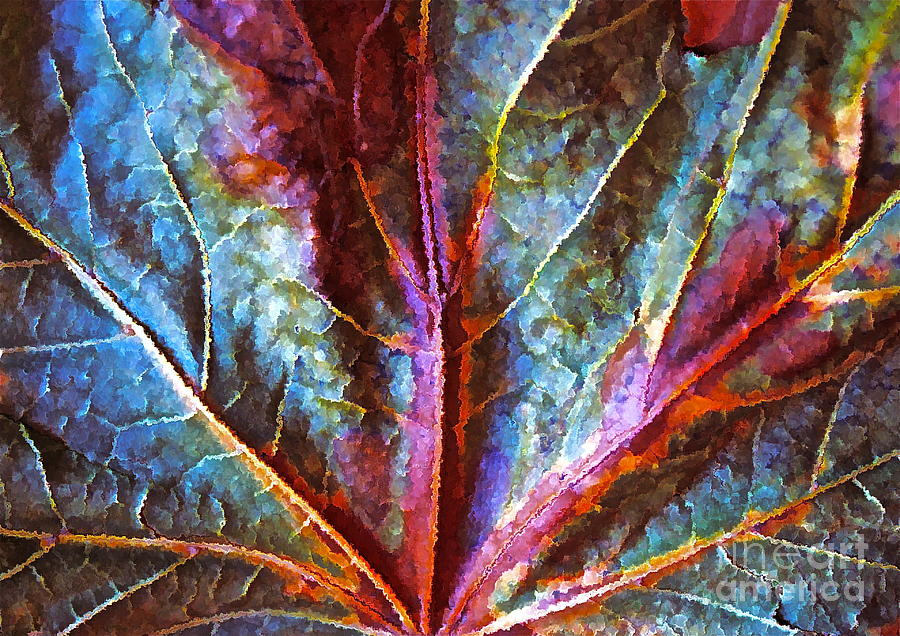 Fall Leaf Photograph - Fall Up Close by Gwyn Newcombe