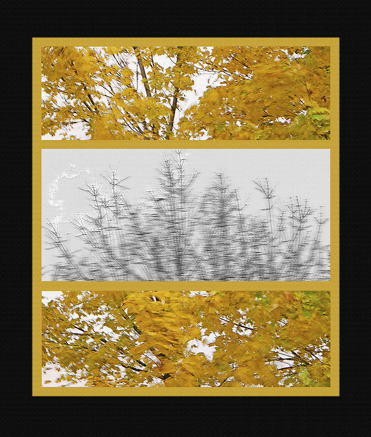 Fall Photograph - Fall Wind Triptych by Steve Ohlsen