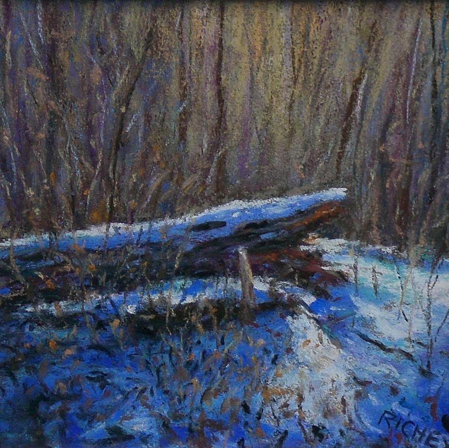 Pastel Pastel - Fallen Wood In Winter by Bob Richey