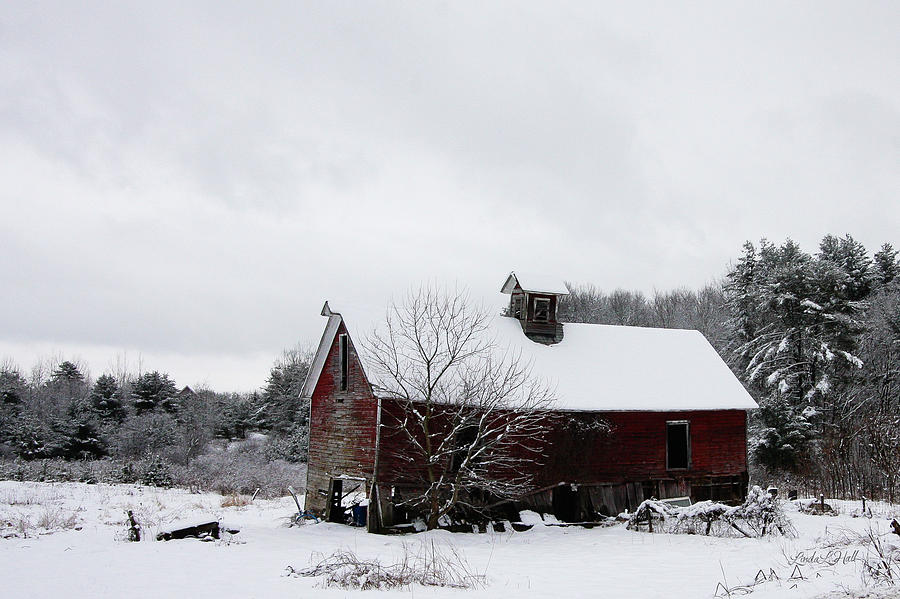 Snow Photograph - Falling Into Ruin by Linda Lee Hall