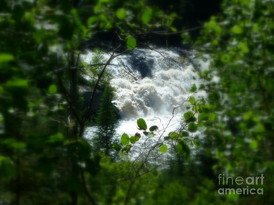 Falls Photograph - Falls In Forest Frame by Art Studio