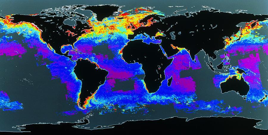 Algal Bloom Photograph - False-col Satellite Image Of Worlds Oceans by Dr Gene Feldman, Nasa Gsfc