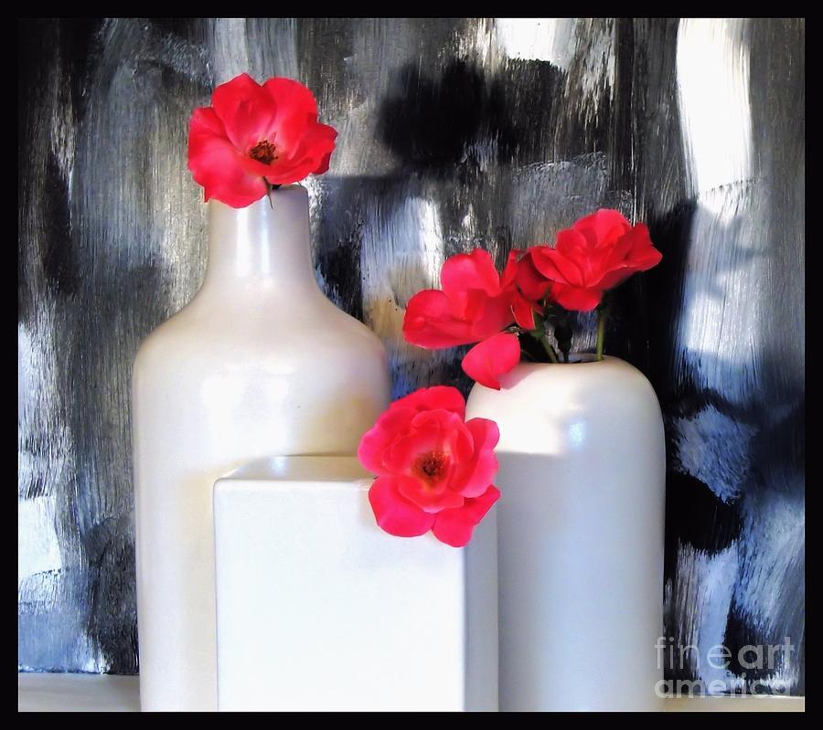 Photo Photograph - Family Of Roses by Marsha Heiken