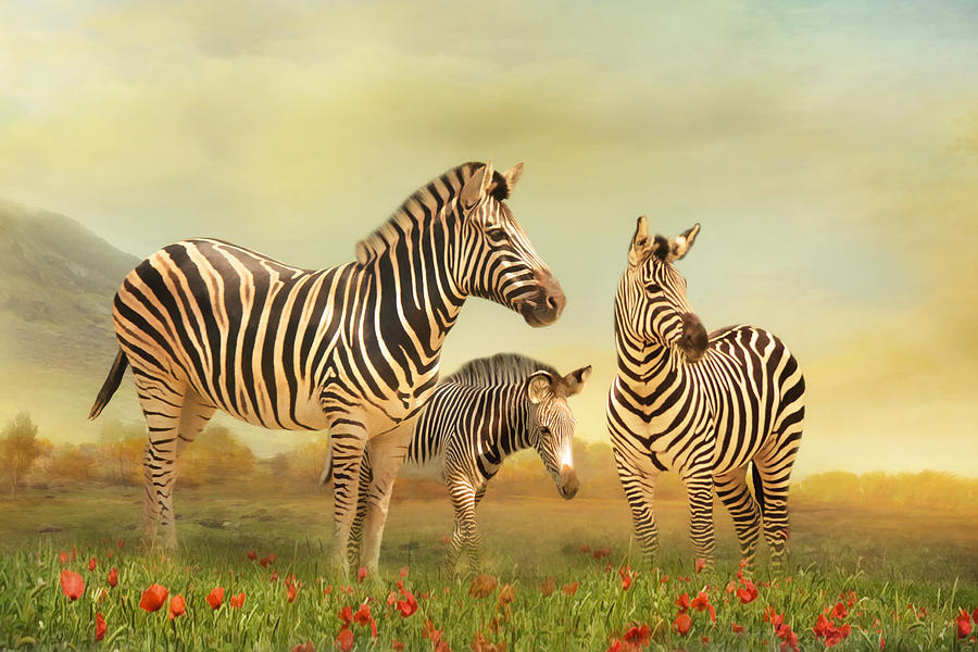 Zebra Digital Art - Family Ties by Trudi Simmonds