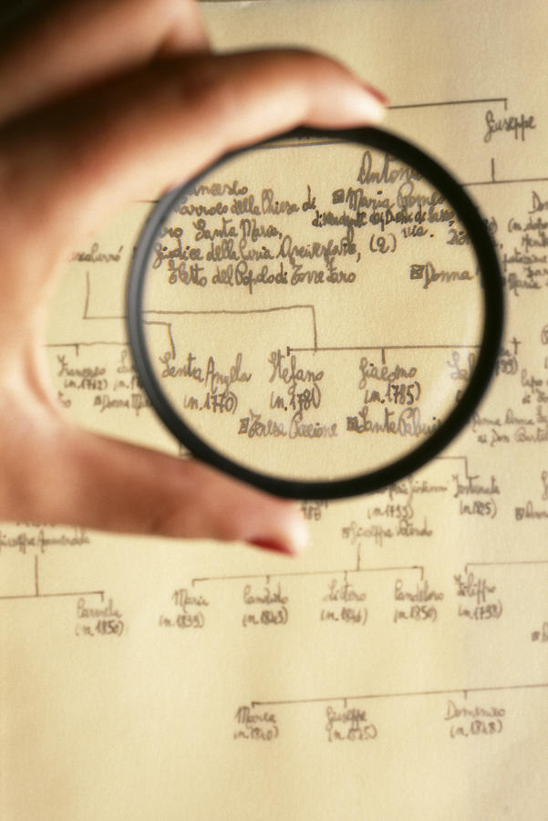 Magnifying Glass Photograph - Family Tree by Mauro Fermariello