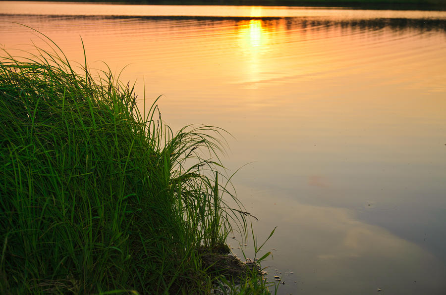 Landscape Photograph - Farewell to the June day by Michael Goyberg