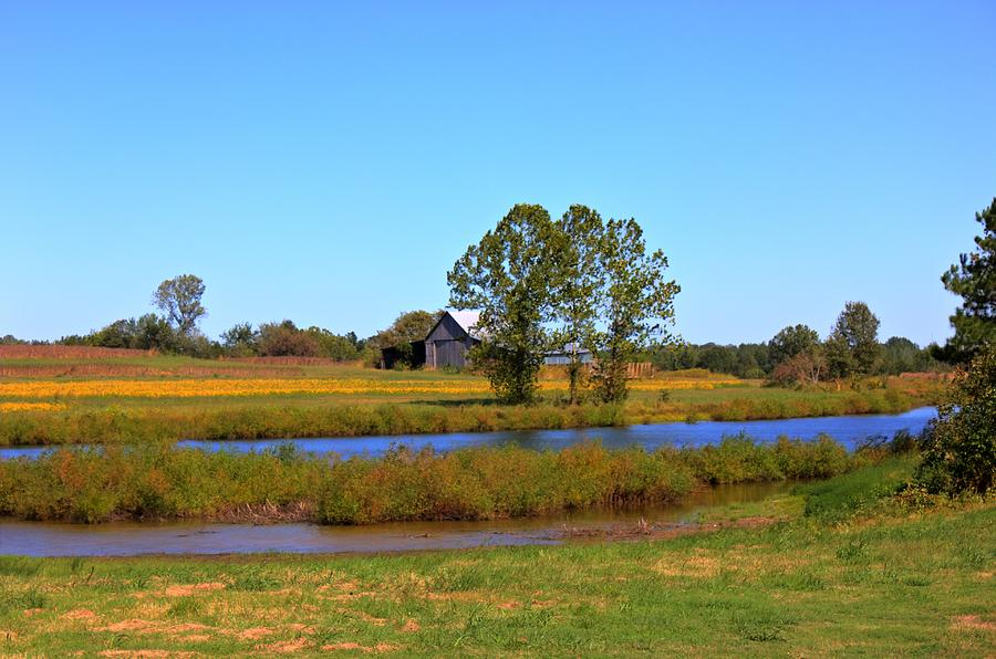 Tennessee Landscape Photograph - Farm Pond And Barn by Barry Jones