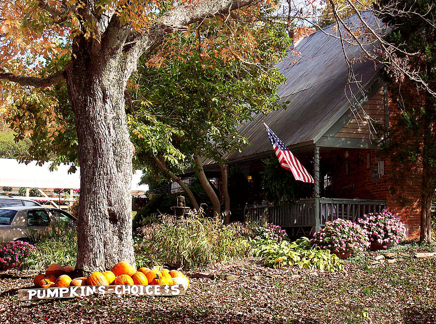 Landscape Photograph - Farmhouse Cafe by Judith Lawhon