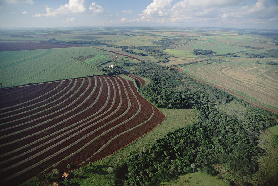 Mp Photograph - Farming Region With Forest Remnants by Claus Meyer
