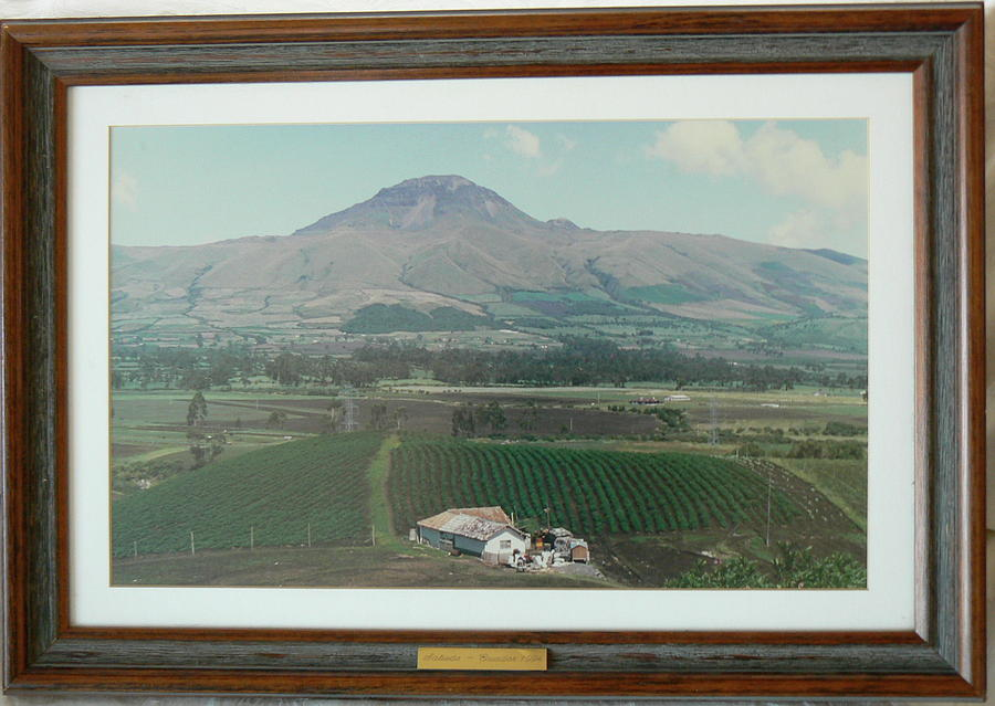 Mountains Photograph - Farmland And Mountains by Steven Mendal