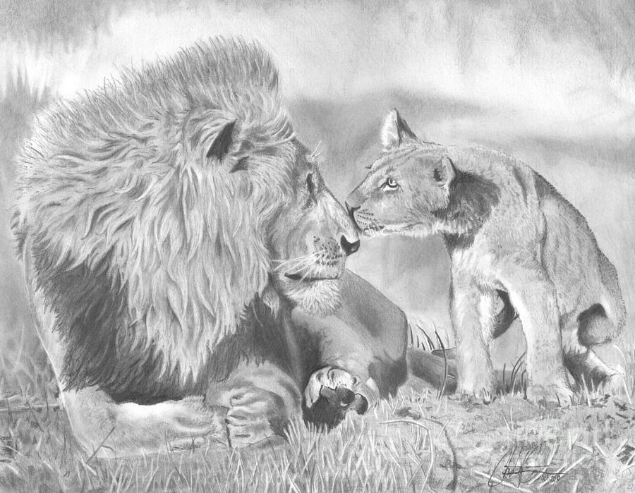 Father And Cub ...