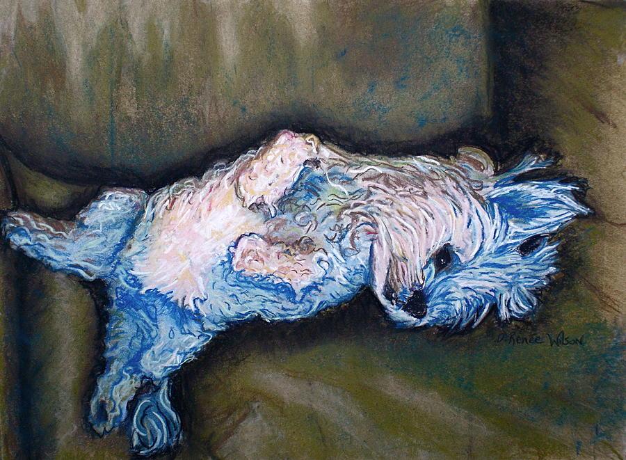 Maltese Painting - Favorite Show by D Renee Wilson