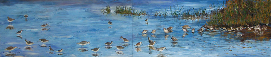 Shore Birds Painting - Feeding Frenzy by Libby  Cagle