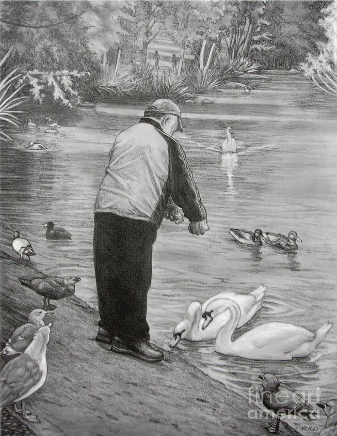 Drawing Drawing - Feeding The Birds by Kim Hunter