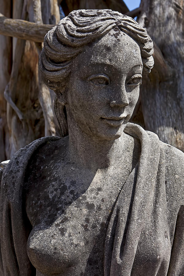 Female Photograph - Female Statue by Garry Gay