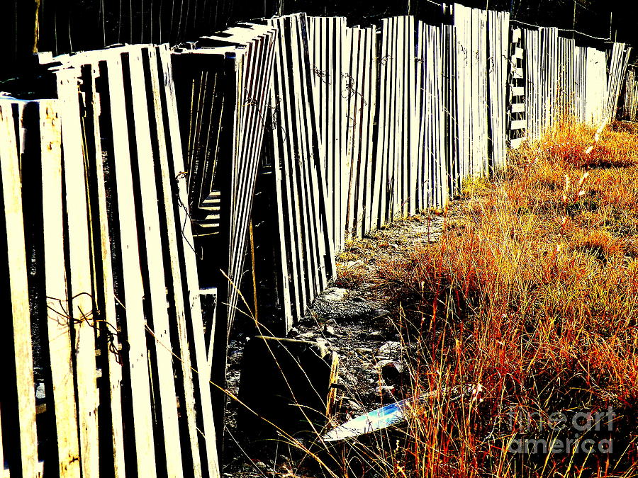 Fence Photograph - Fence Abstract by Joe Jake Pratt