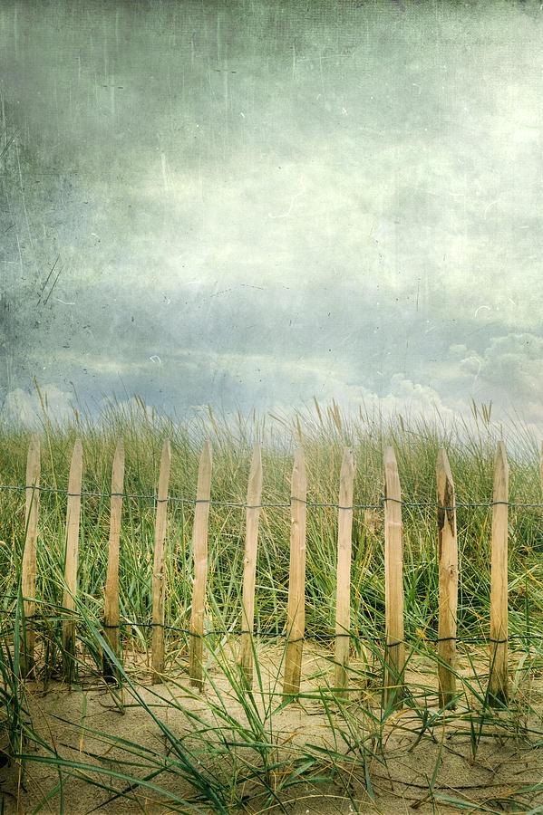 Fence Photograph - Fence by Joana Kruse
