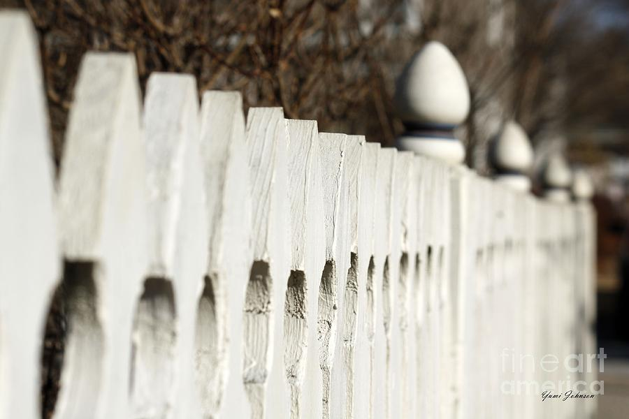 Fence Photograph - Fence by Yumi Johnson
