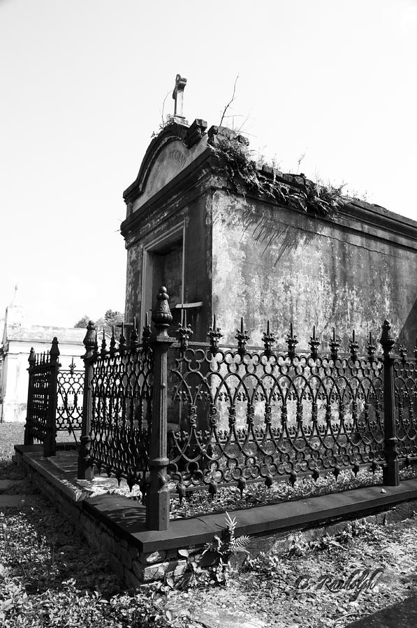 New Orleans Photograph - Fenced In by Cheri Randolph