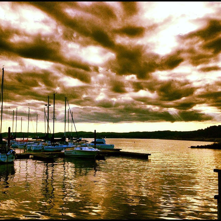 Boats In Harbor Photograph - Fern Ridge Harbor by Bryan Normann