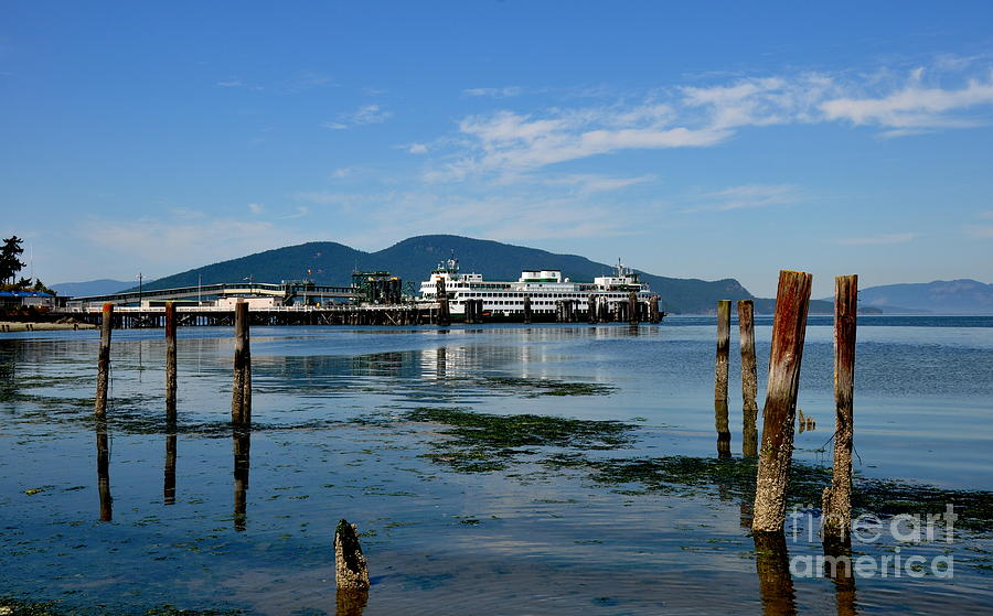 Ferry Dock In Anacortes Wa Photograph By Tanya Searcy