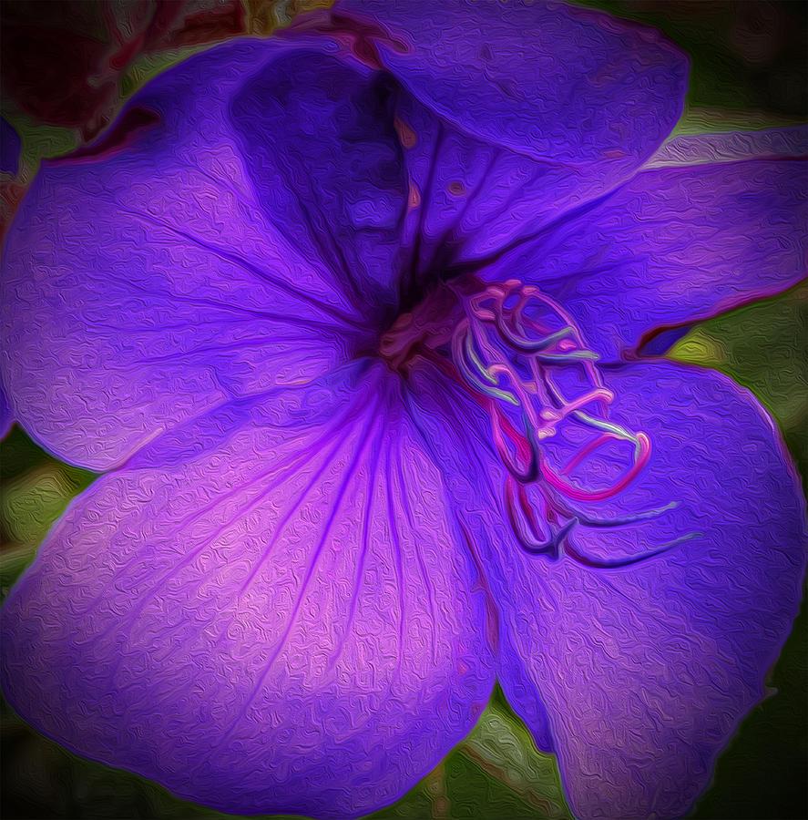 Purple Flower Photograph - Field Of Purple by Jeanean Gendron