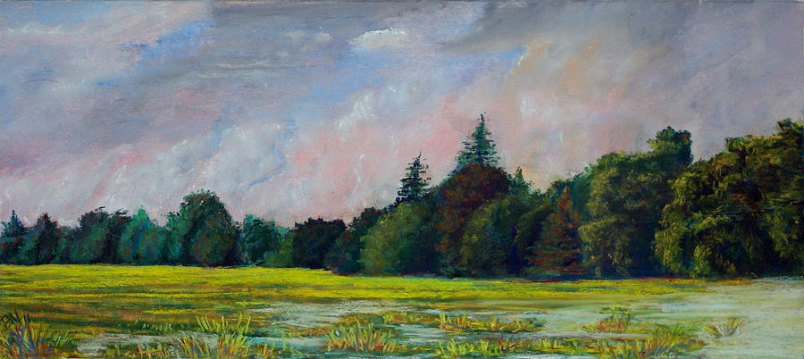 Pastel Pastel - Fields Mid-storm by Peter Jackson