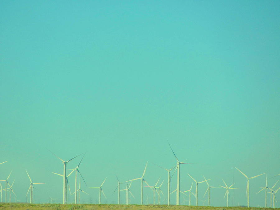 Photograph Photograph - Fields Of Windmills by Amy Bradley