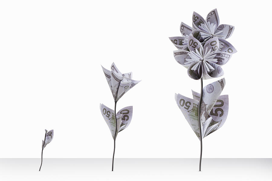 Fifty Us Dollar Note Flowers Photograph by Andrew Bret Wallis