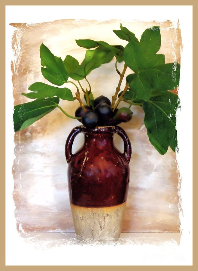 Photo Photograph - Fig Branch In Europeon Pottery by Marsha Heiken