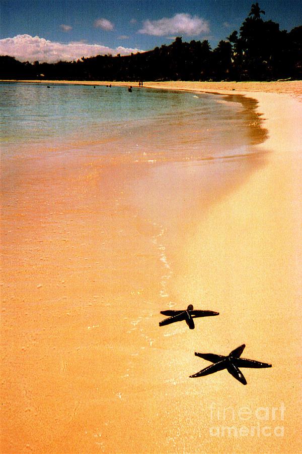 Beach Photograph - Fiji Beach With Starfish by Jerome Stumphauzer