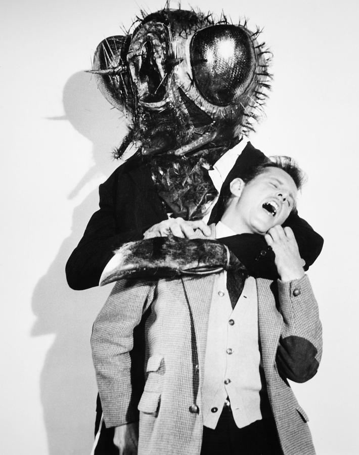 film-the-fly-1958-granger.jpg