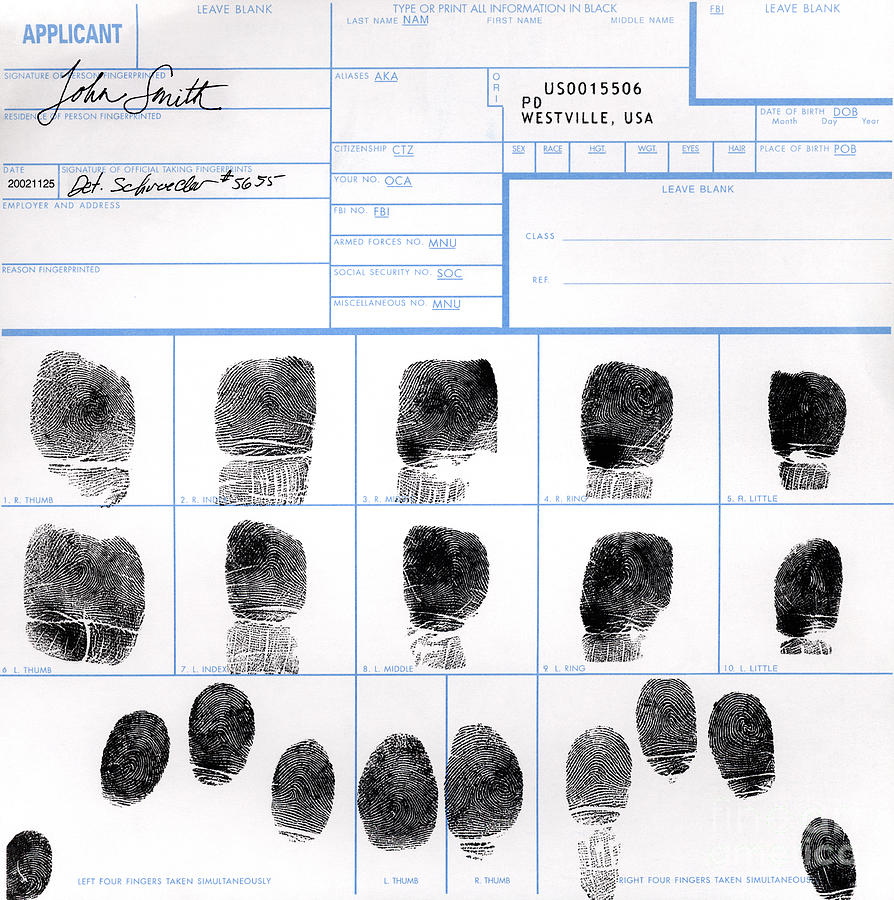 Fingerprint Photograph - Fingerprint Identification Application by Science Source