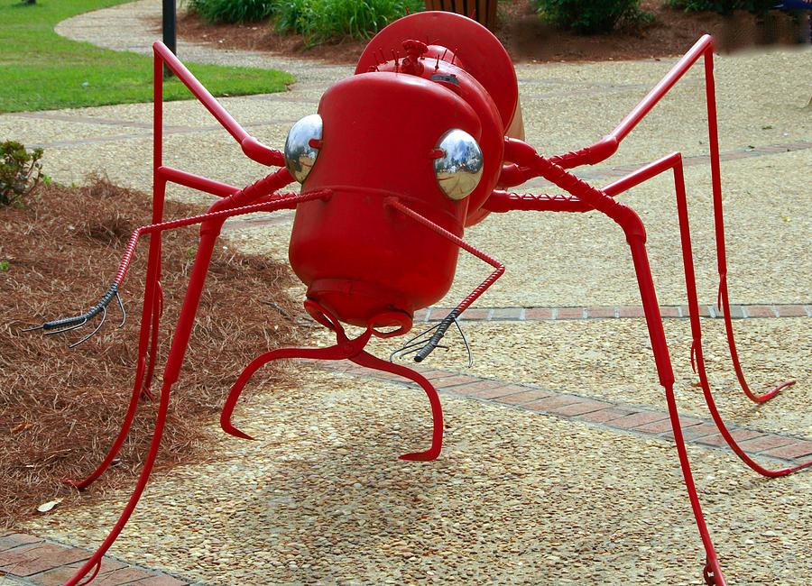 Fire Ant Art Photograph by Danny Jones