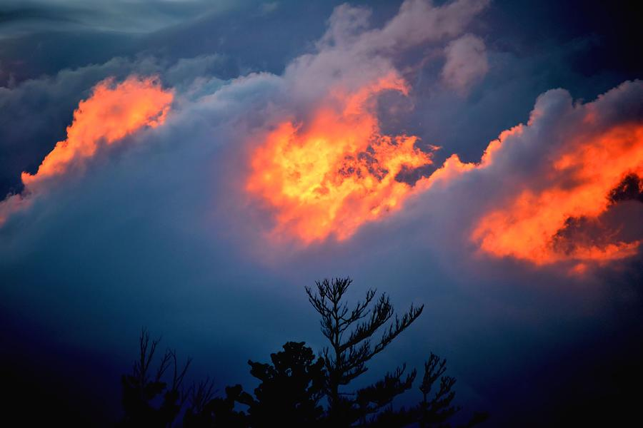 fire in the sky photograph by barbara hart. Black Bedroom Furniture Sets. Home Design Ideas