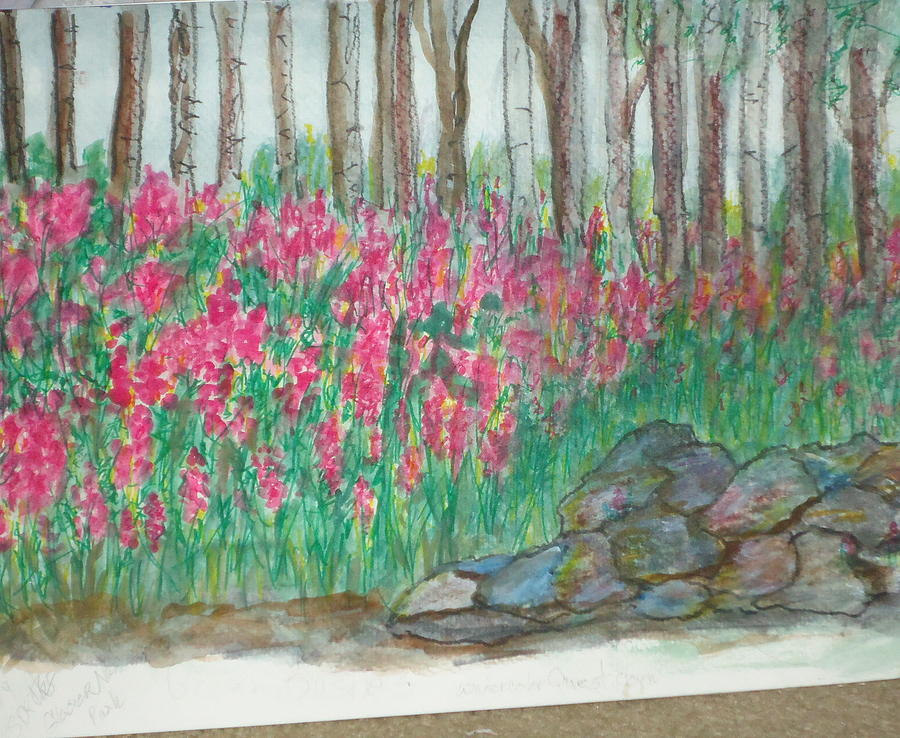 Fireweed By Stonewall Painting by Debbie Wassmann