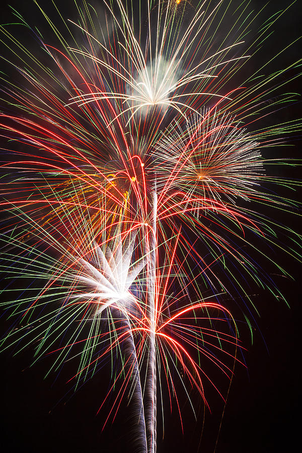Fireworks 4th Of July Photograph - Fireworks Light Up The Night by Garry Gay