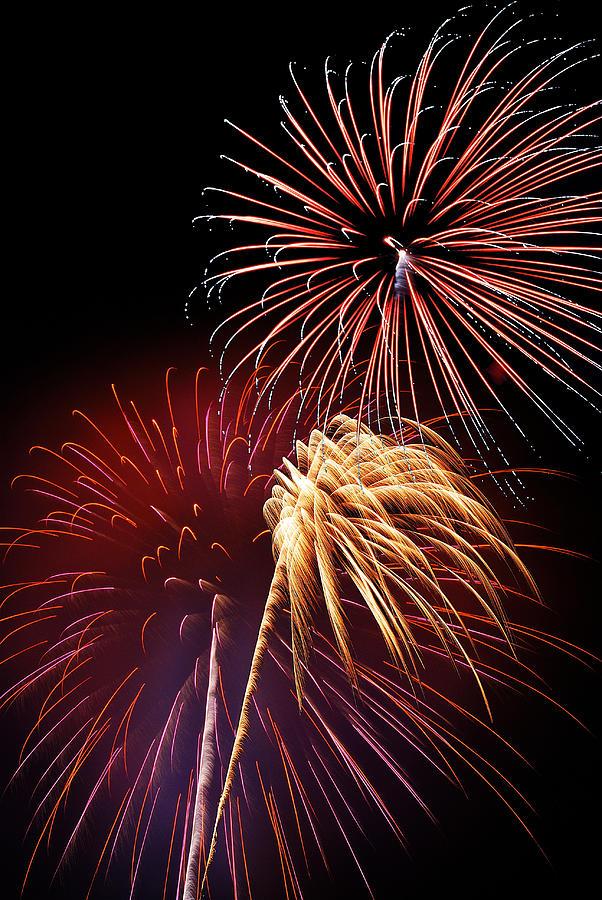 Fireworks Photograph - Fireworks Wixom 3 by Michael Peychich