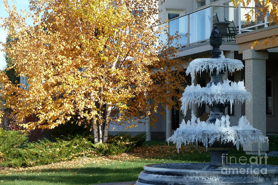 Impression Photograph - First Frost by Anna  Duyunova
