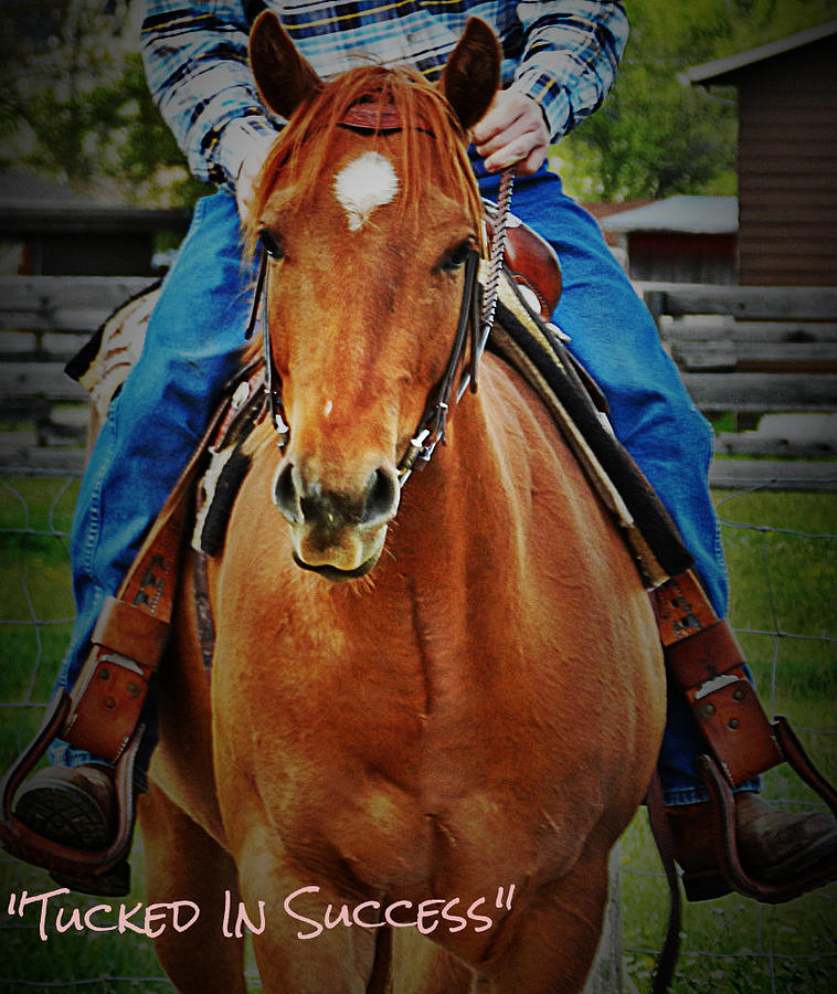 Horse Photograph - First Ride by Vanessa Bardeck