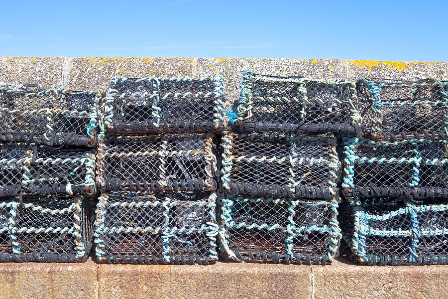Crab Net Photograph - Fishing Baskets by Tom Gowanlock