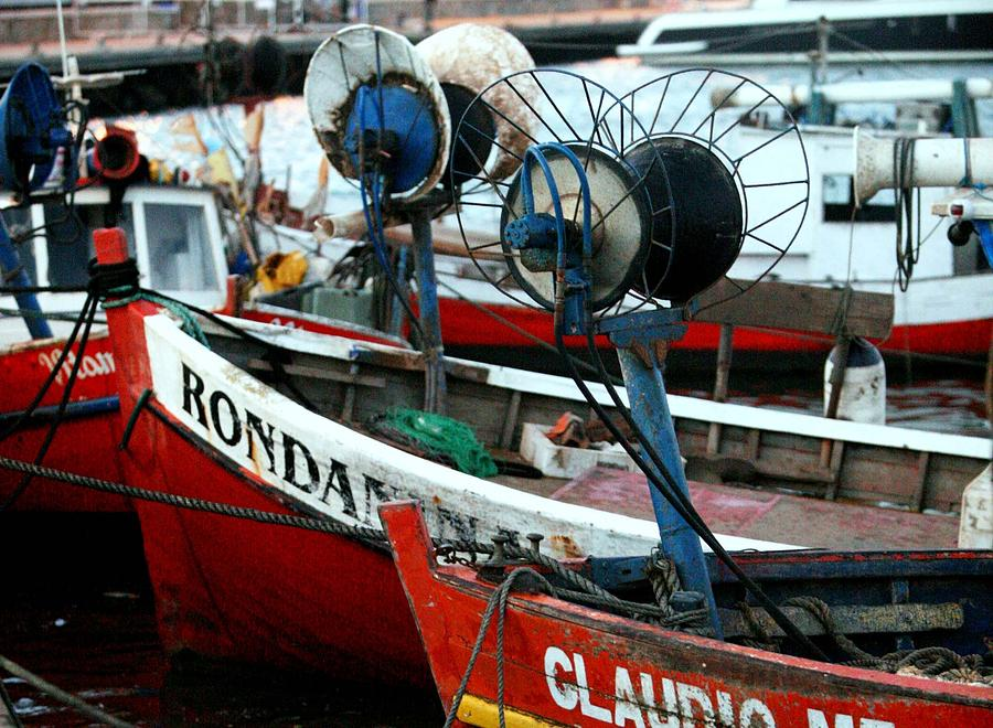 Fishing Boats Photograph - Fishing Boats by Pablo  De Loy